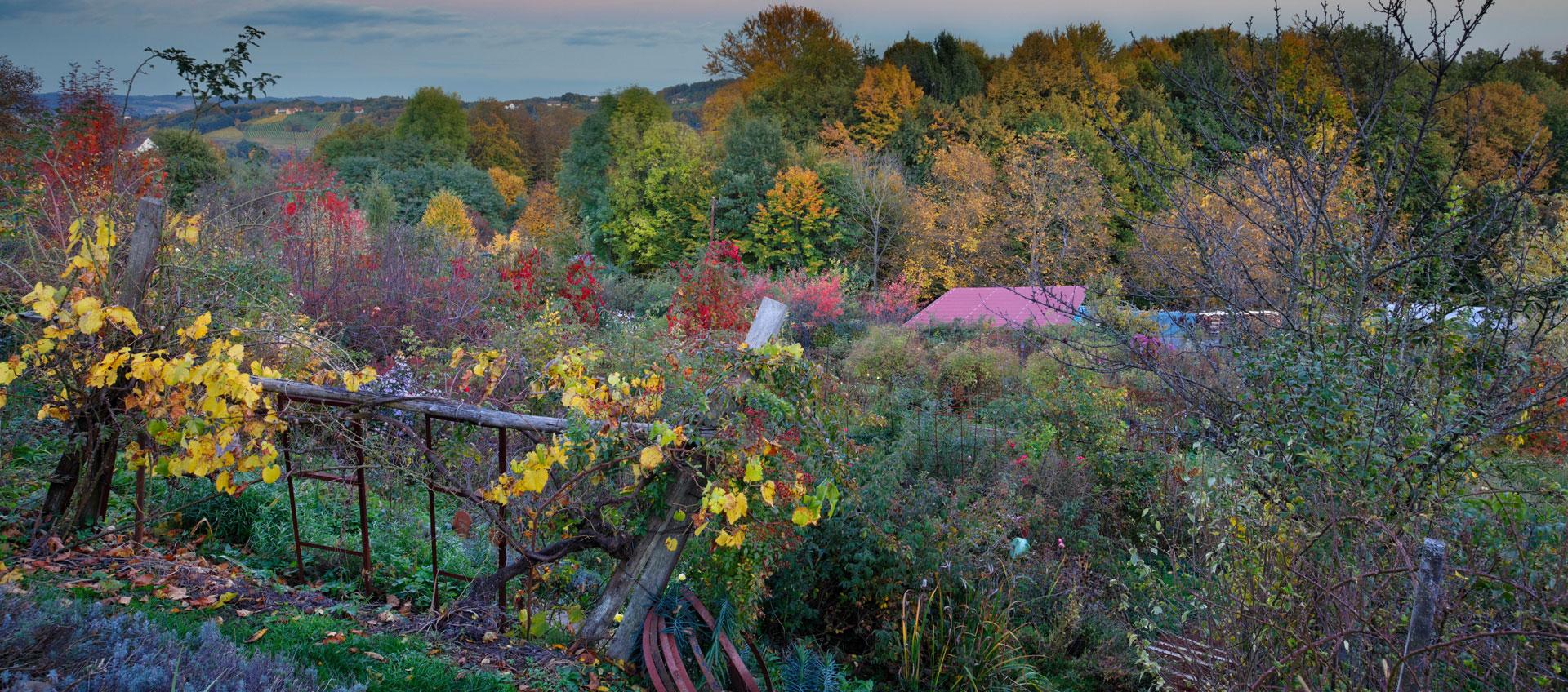 Unser Rosengarten in der Steiermark